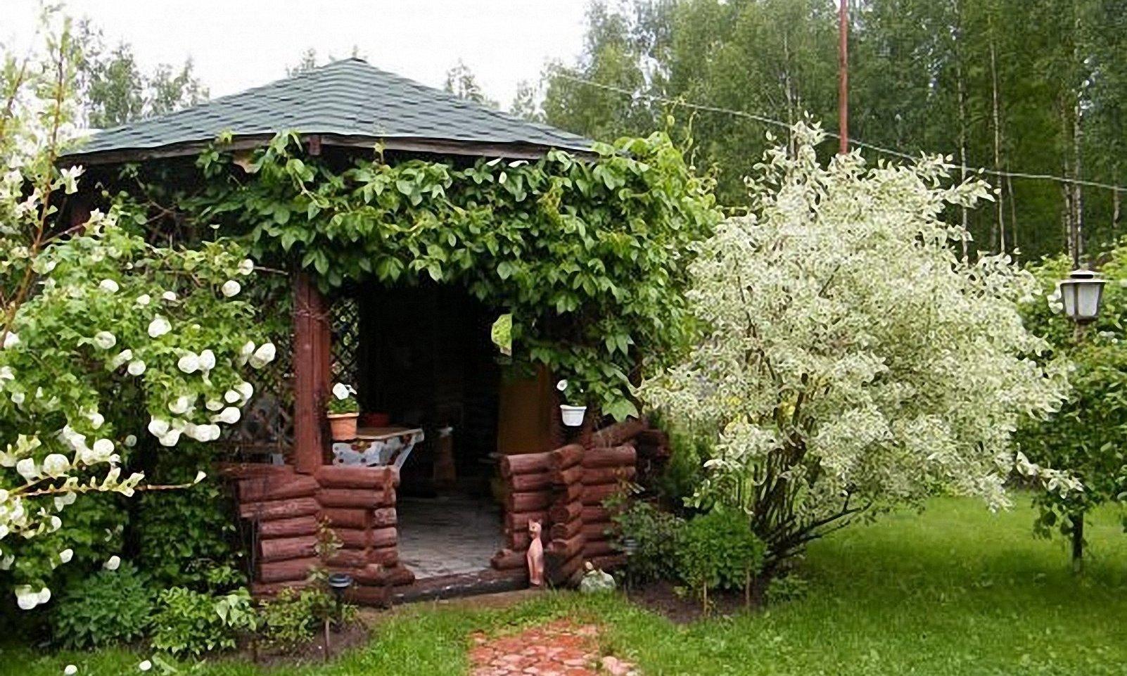садовая беседка с растениями