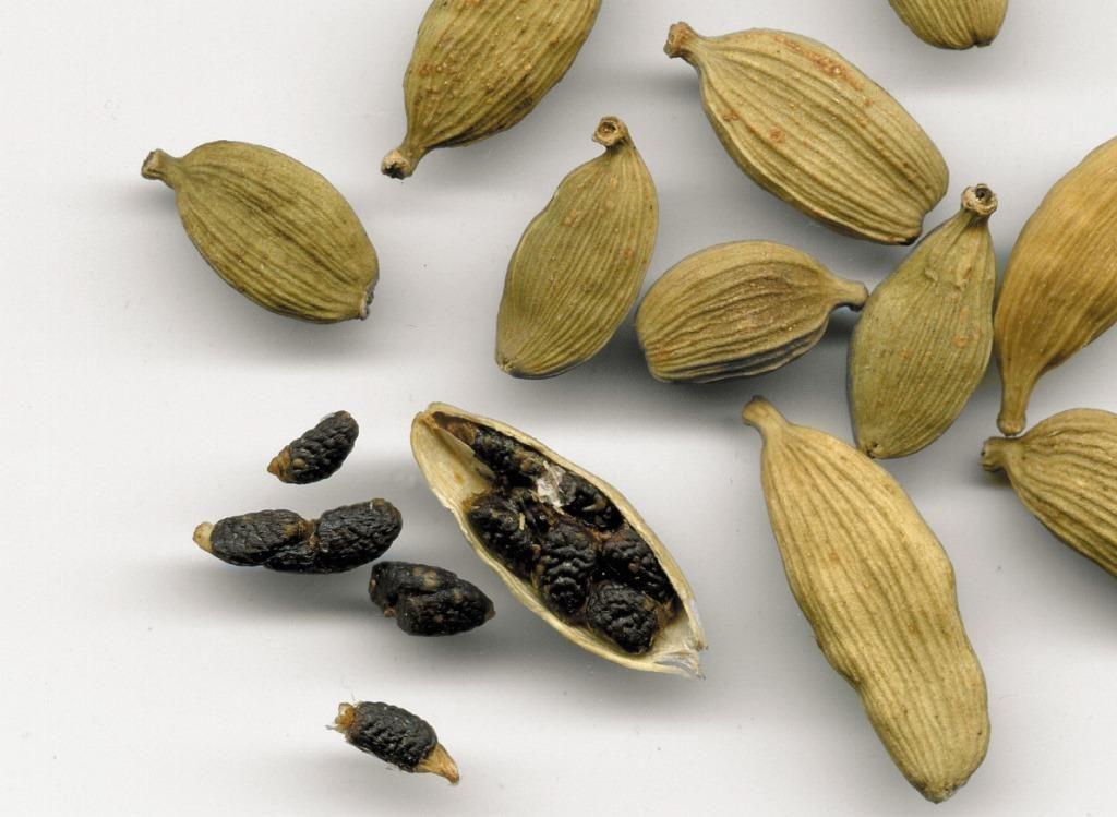 Плод кардамона