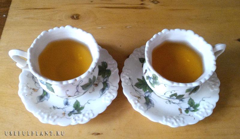 чай и коронавирус